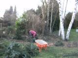 Tuinaanleg - onderhoud